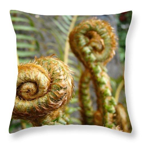 Fern Throw Pillow featuring the photograph Ferns Art Print Forest Fern Artwork Canvas Baslee Troutman by Baslee Troutman