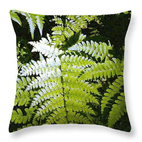 Ferns Throw Pillow featuring the photograph Ferns by Nelson Strong
