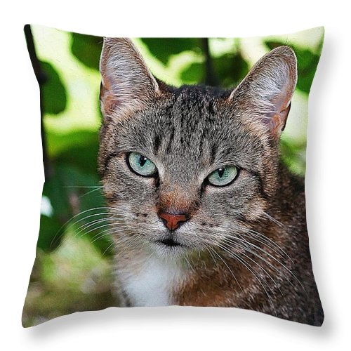 Cat Art Throw Pillow featuring the painting Ferocious Cat by Queso Espinosa