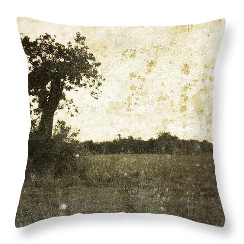 Landscape Throw Pillow featuring the photograph Field. by Dave English