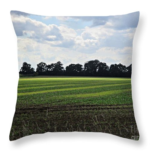 Meadow Throw Pillow featuring the photograph Field Near Coswig by Chani Demuijlder