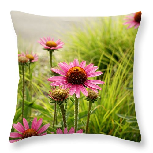 Echinacea Throw Pillow featuring the photograph Field Of Coneflowers by Valerie Fuqua