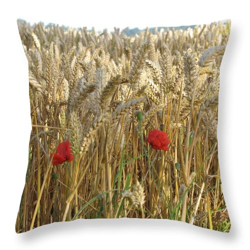 Poppy Throw Pillow featuring the photograph Field Of Dreams by Maria Joy