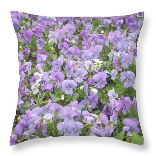 Garden Throw Pillow featuring the photograph Field Of Flowers by Anna Villarreal Garbis