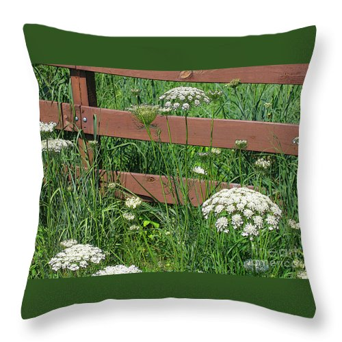 Flower Throw Pillow featuring the photograph Field Of Lace by Ann Horn