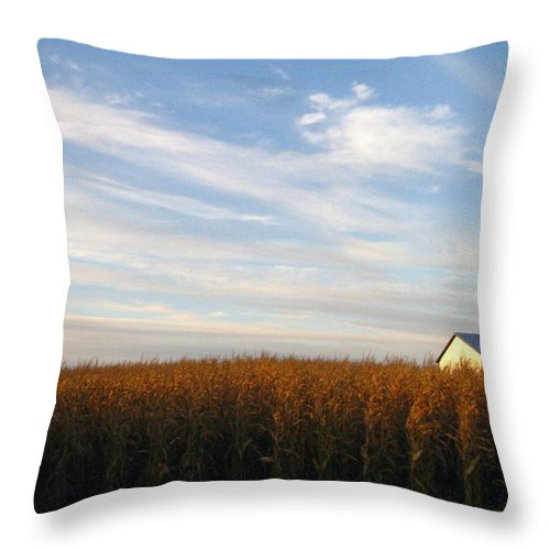 Country Throw Pillow featuring the photograph Fields Of Gold by Rhonda Barrett