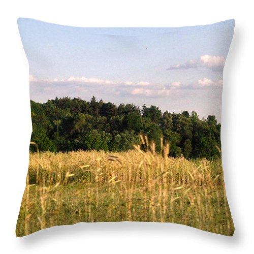 Field Throw Pillow featuring the photograph Fields Of Grain by Rhonda Barrett