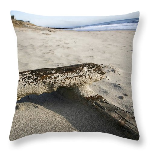 Seascape Throw Pillow featuring the photograph Final Drift by Mary Haber