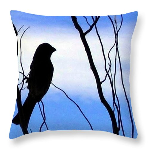 Finch Throw Pillow featuring the photograph Finch Silhouette 1 by Will Borden