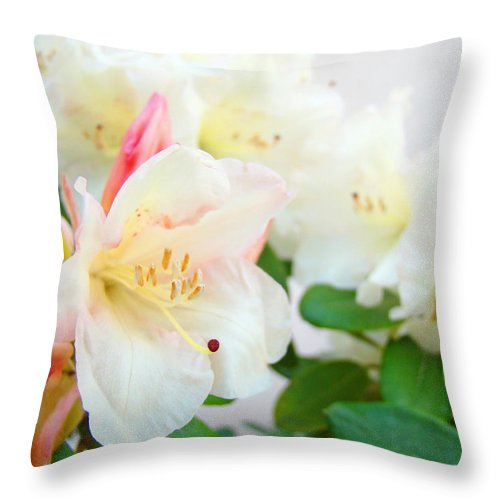 Rhodie Throw Pillow featuring the photograph Fine Art Florals Prints White Pink Rhodies Rhododendrons Baslee Troutman by Baslee Troutman