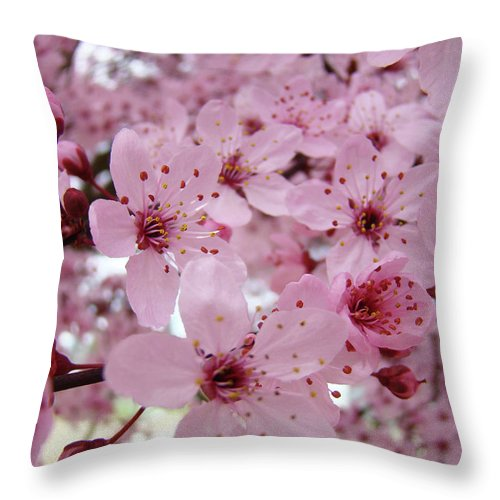 Blossom Throw Pillow featuring the photograph Fine Art Prints Spring Pink Blossoms Trees Canvas Baslee Troutman by Baslee Troutman