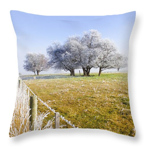 Artistic Throw Pillow featuring the photograph Fine Art Winter Scene by Jorgo Photography - Wall Art Gallery