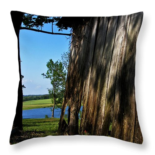 Landscape Throw Pillow featuring the photograph Fine Woodwork by Rachel Christine Nowicki