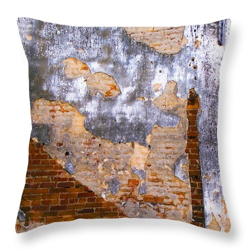 Architecture Throw Pillow featuring the photograph Finger Food by Skip Hunt