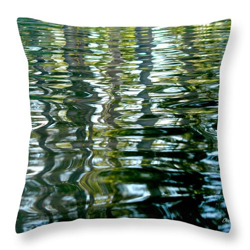 Water Throw Pillow featuring the photograph Finger Painting by Donna Blackhall