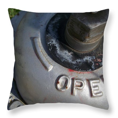 Public Utilities Throw Pillow featuring the photograph Fire Hydrant 2 by Gigi Croom