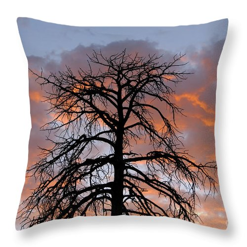 Fire Throw Pillow featuring the photograph Fire In The Sky by David Lee Thompson