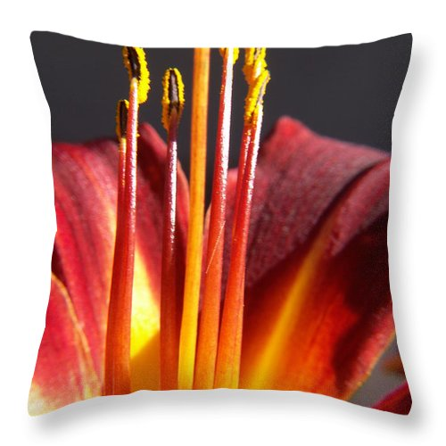 Fire Lily Throw Pillow featuring the photograph Fire Lily by Amy Fose