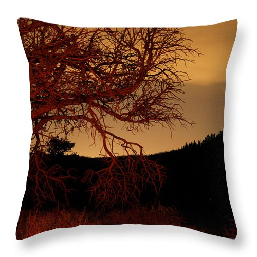 Landscape Throw Pillow featuring the photograph Fire Tree by Jeffery Ball