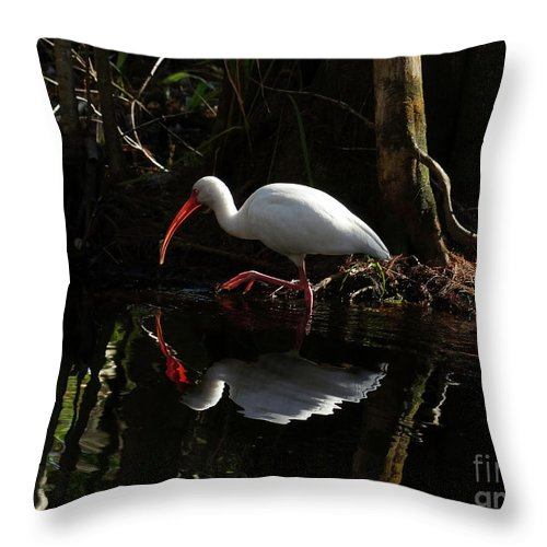 Fired Up Throw Pillow featuring the photograph Fired Up by Teresa A and Preston S Cole Photography