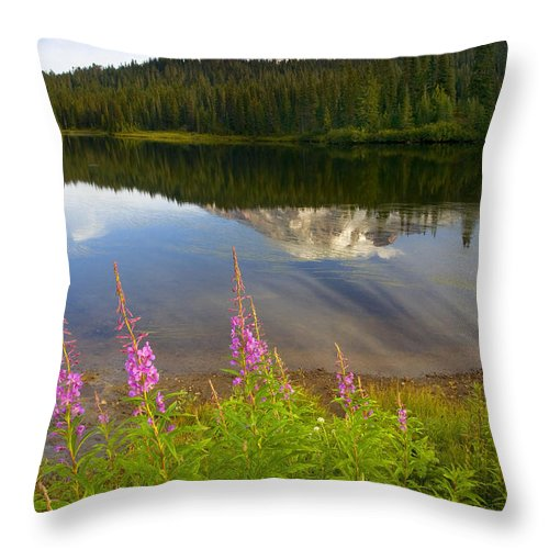 Fireweed Throw Pillow featuring the photograph Fireweed Reflections by Mike Dawson