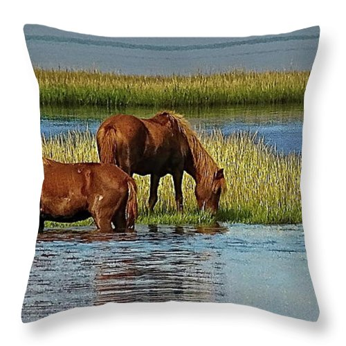 Assateague Island Throw Pillow featuring the photograph First Crossing by Anthony Pelosi
