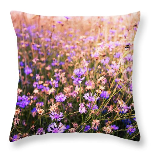 Bumble Bee Throw Pillow featuring the photograph First Flight by Radek Spanninger