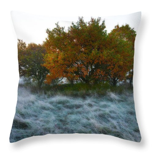 Autumn Throw Pillow featuring the photograph First Frost by Andre Distel