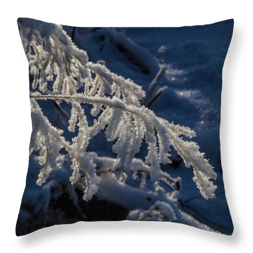 Frost Throw Pillow featuring the photograph First Light by Alana Thrower