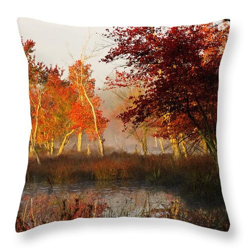 Landscape Throw Pillow featuring the photograph First Light At The Pine Barrens by Louis Dallara