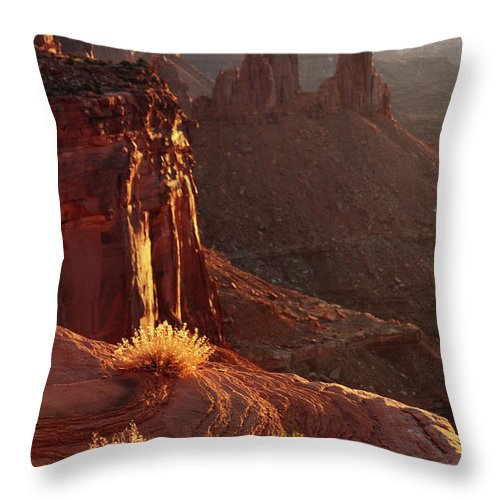 Canyonlands National Park Throw Pillow featuring the photograph First Rays by Marie Leslie