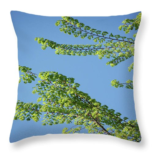 Tree Throw Pillow featuring the digital art First Sign Of Spring I by DigiArt Diaries by Vicky B Fuller