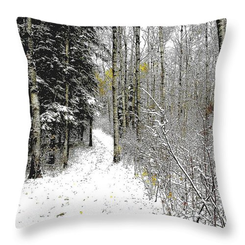 Winter Throw Pillow featuring the photograph First Snowfall by Nelson Strong