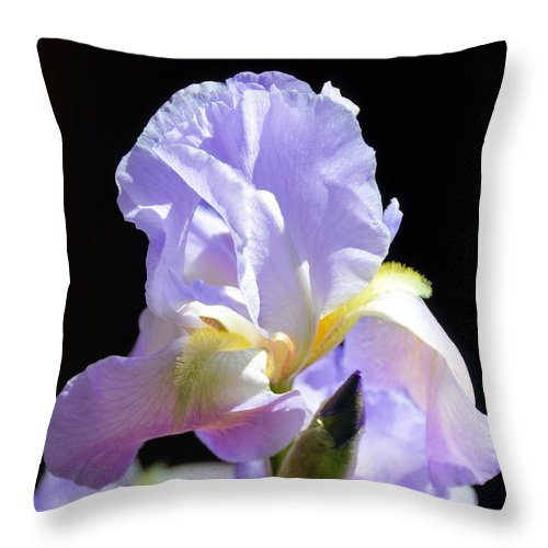 Floral Throw Pillow featuring the photograph First To Bloom by Jan Amiss Photography