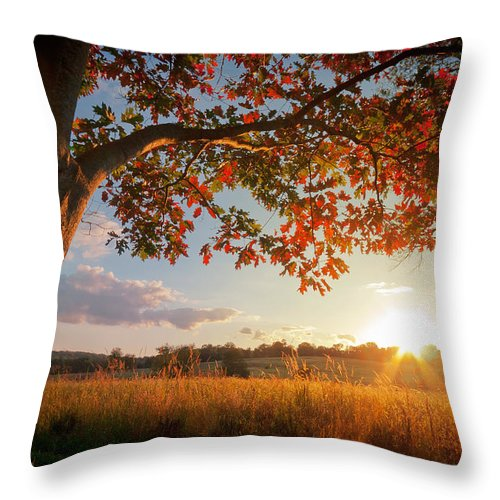 Autumn Throw Pillow featuring the photograph First Touch Of Autumn by David Lamb