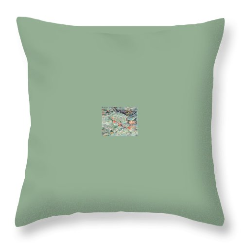 Art Throw Pillow featuring the drawing Fish Art Trout Art Brook Trout Brookie Artwork Nature Underwater Wildlife Creek Art River Art Lake by Baslee Troutman