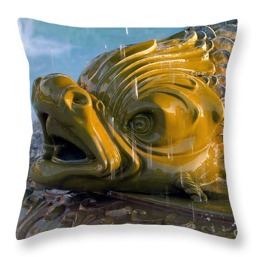Fish Throw Pillow featuring the photograph Fish Out Of Water by David Lee Thompson
