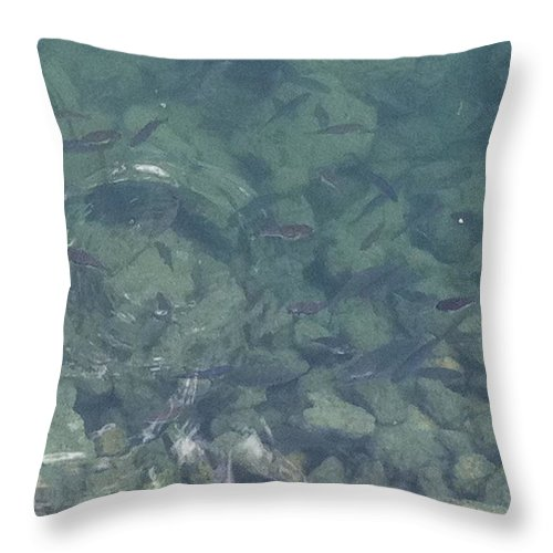 Fish Throw Pillow featuring the painting Fish by Richard Benson