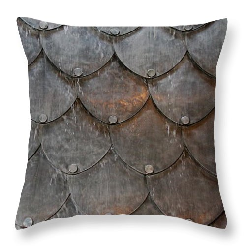 Shapes Throw Pillow featuring the photograph Fish Scales by Kenna Westerman