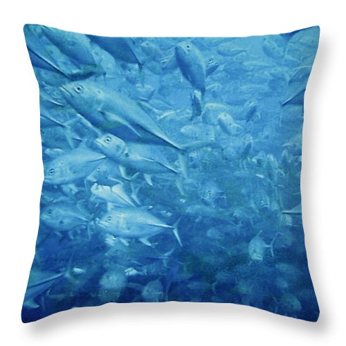 Fish Throw Pillow featuring the photograph Fish Schooling Harmonious Patterns Throughout The Sea by Christine Till