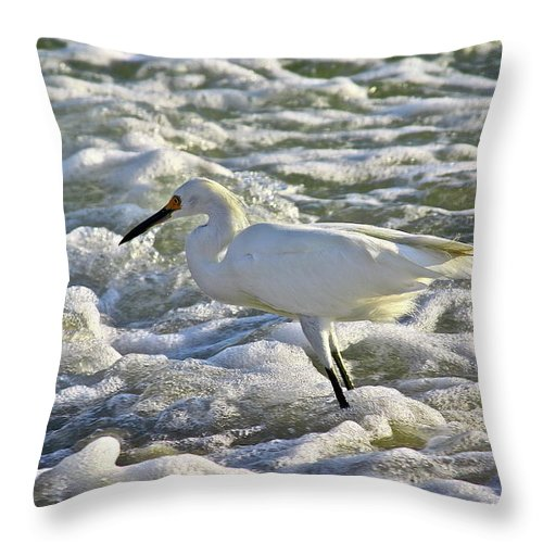 Ocean Throw Pillow featuring the photograph Fishing In The Foam by Diana Hatcher