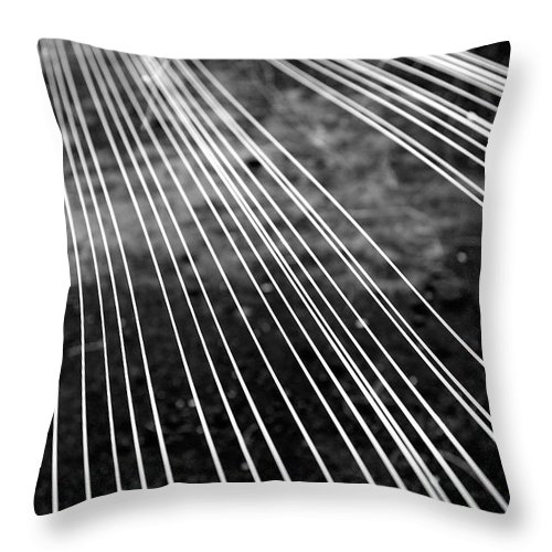Abstract Throw Pillow featuring the photograph Fishing Lines by Gaspar Avila