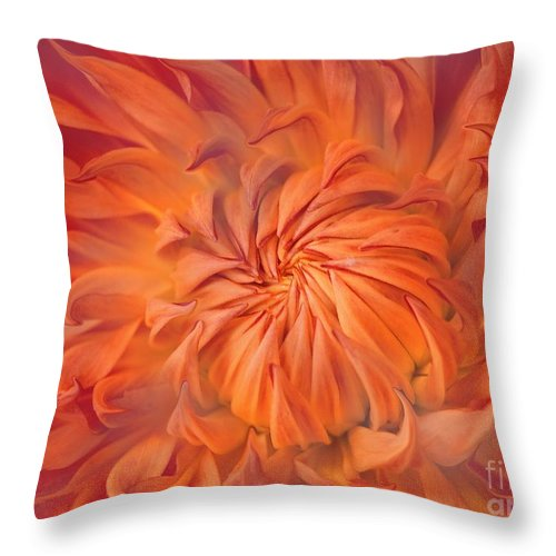 Flower Throw Pillow featuring the photograph Flame by Jacky Gerritsen