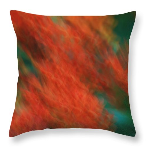 Flame Throw Pillow featuring the photograph Flame Thrower by Rachel Cohen