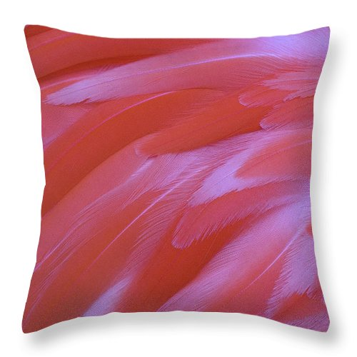 Flamingo Feathers Throw Pillow featuring the photograph Flamingo Flow 2 by Michael Hubley