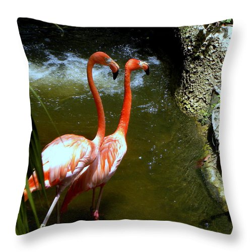 Flamingo Throw Pillow featuring the photograph Flamingo Pair by Terri Mills