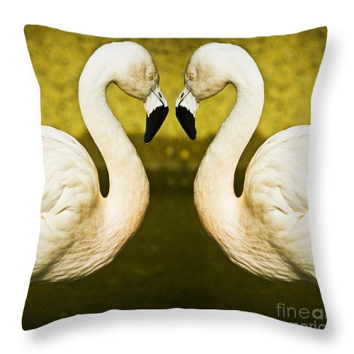 Flamingo Throw Pillow featuring the photograph Flamingo Reflection by Sheila Smart Fine Art Photography