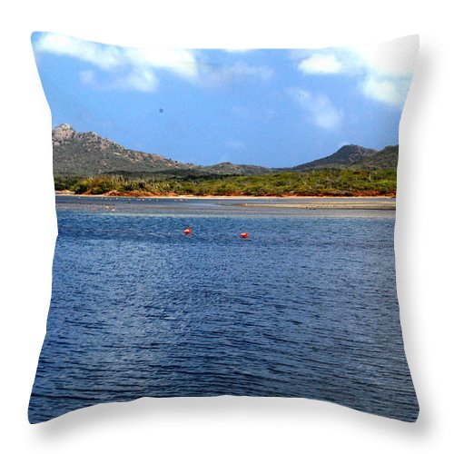 Flamingo Throw Pillow featuring the photograph Flamingo's Home by Gary Wonning