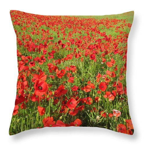 Flanders Field Throw Pillow featuring the photograph Flanders Field by Maria Joy