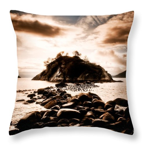 Beauty In Nature Throw Pillow featuring the photograph Fleeting Path by Venetta Archer